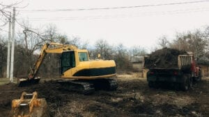 Excavator clears tree roots