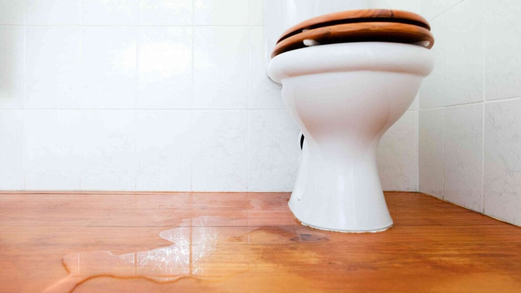 Stop Toilets from Leaking